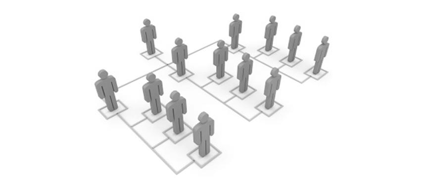 Organization Commission