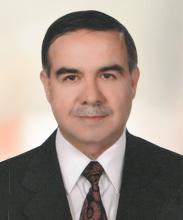 Mustafa İriş